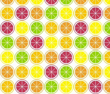Rcitrus_segment_polka_dot._shop_preview