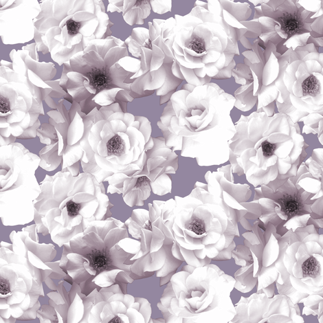 White Roses on Purple fabric by pond_ripple on Spoonflower - custom fabric