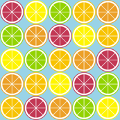 Citrus Segment Polka Dot Blue