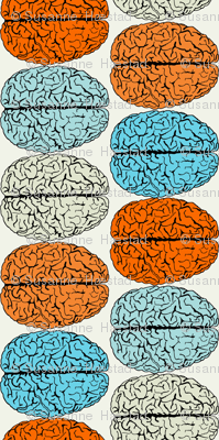 Colorful Brains