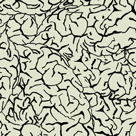 brain_surface2c fabric by susiprint on Spoonflower - custom fabric