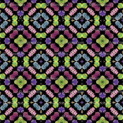 Kaleidoscope Bugs 3