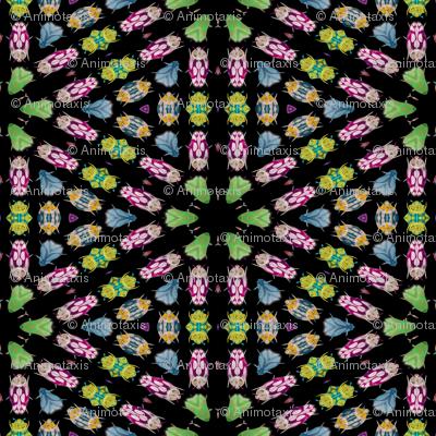 Kaleidoscope Bugs 4
