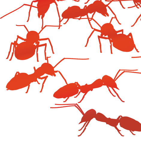 Red Fire Ants fabric by animotaxis on Spoonflower - custom fabric