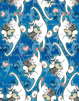 Kitten Cam Kitties