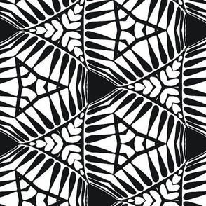 zebra geometric