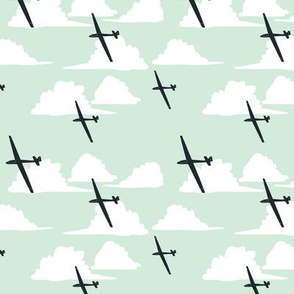 Gliders Under a Cumulus Cloud