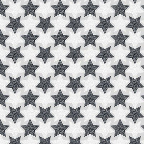 Mirrorculous Stars navy and_white_synergy0012