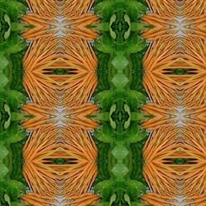 carrots_mine