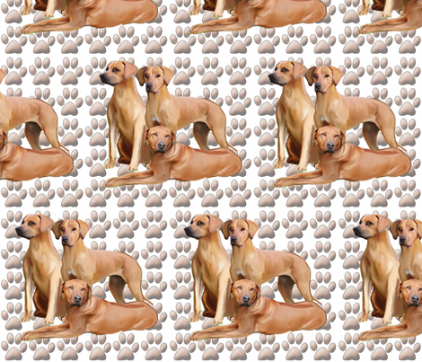 three_rhodesian_ridgebacks fabric by dogdaze_ on Spoonflower - custom fabric