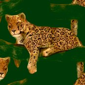 Rrgreen_jaguar10_shop_thumb