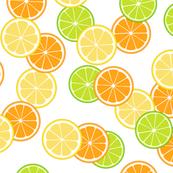 Lemon, Lime & Orange Slices Print
