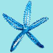 Rrcestlaviv_starfishrobinegg_shop_thumb