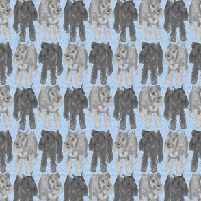 Standing Standard Schnauzers - blue