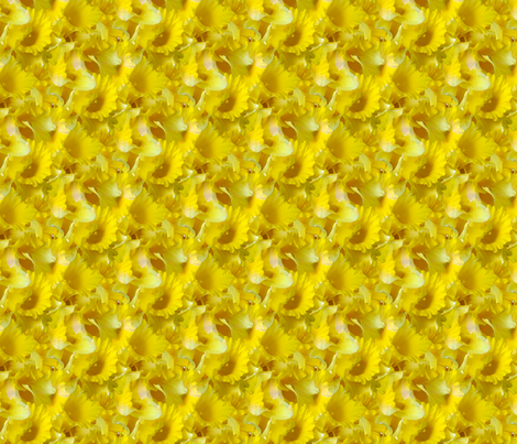 Daffodils 02 fabric by will_la_puerta on Spoonflower - custom fabric