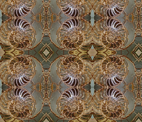 Fossil Spirals large repeat