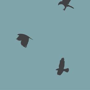 crowsblue-01