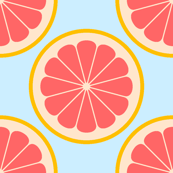 citrus slices R4X
