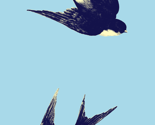 Rregg_blue_swallow_thumb