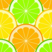 citrus scales R6