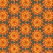 Zinnia_orange_shop_thumb