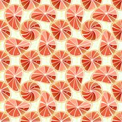 Rgrapefruit_slices_gedraaid_shop_thumb