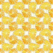 Rorange-tangerine_slices_gedraaid_shop_thumb