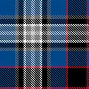 Custom Tartan ~ Make Your Own!