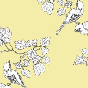 birdies lemon-cream