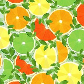A Slice of Citrus