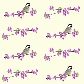 Redbuds and Chickadees