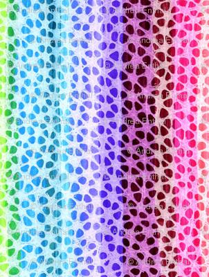 Rainbow Paws vertical stripe