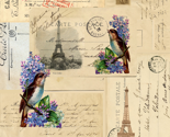 Reiffel_postcards_birds_thumb