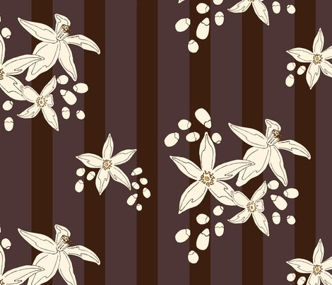 Rorange_blossom_stripe.ai_shop_preview