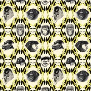 bananas_and_monkeys