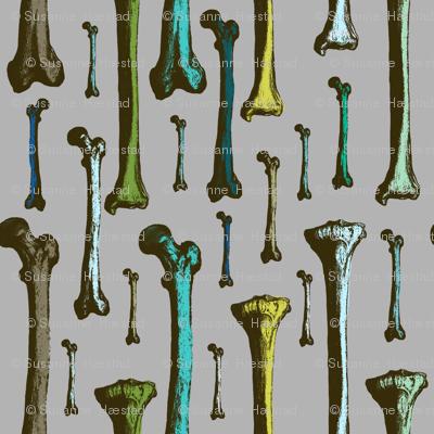 Bones colorized
