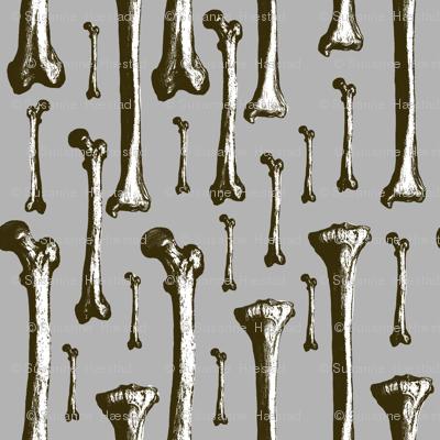 White bones on grey