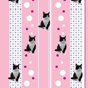 Dotty Cat- pink