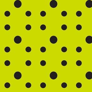 Dot Dot Dot  in Black on Avacado