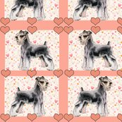 Rminiature_schnauzer2_shop_thumb