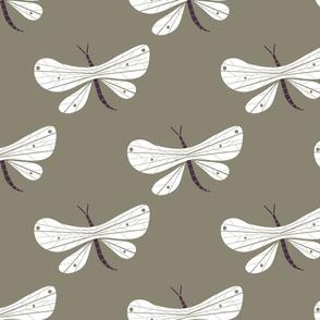 Dragonfly grey