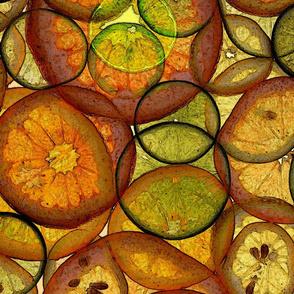citrus1hd