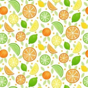 Citrus Fruits smaller pattern