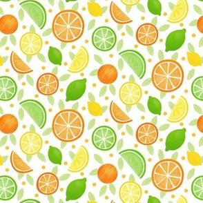 Citrus Fruits smaller pattern