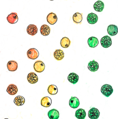 Citrus Fruit Dots