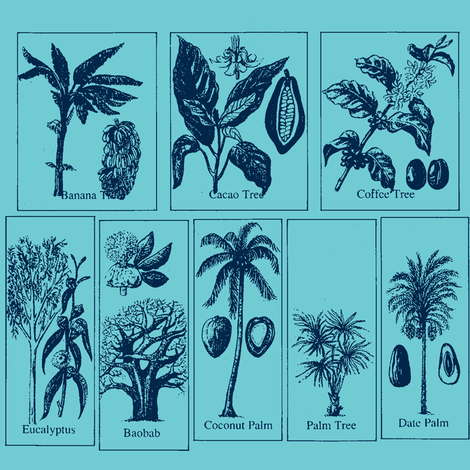 Tropical Trees blues