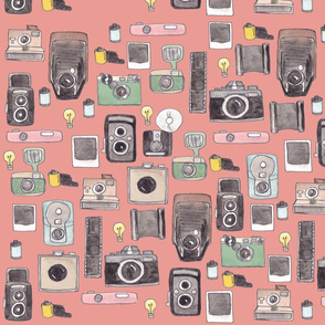 Vintage Cameras in pink