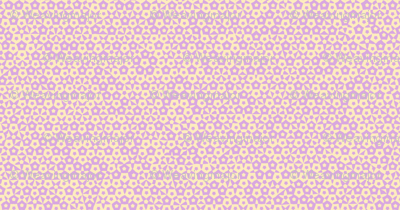 quasicrystal stars (pink and yellow)