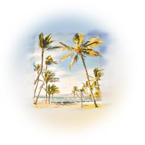 hawaii_bluesky2