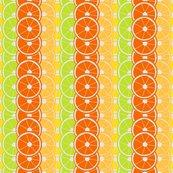 Citrus-slices_shop_thumb
